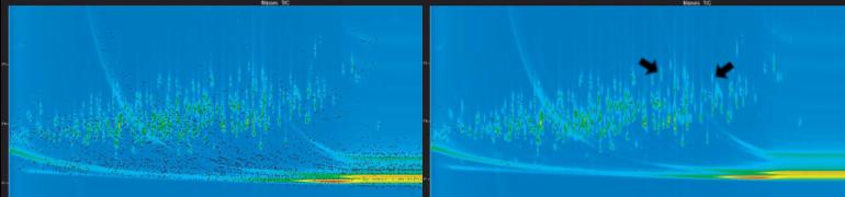 Exemplo de amostra ChromaTOF IGS