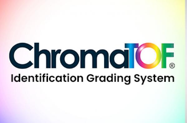 Sistema de Classificação de Identificação